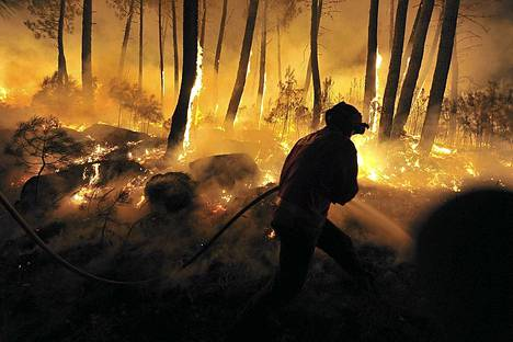 Palomies taistelemassa maastopaloa vastaan Portugalin Moimenta de Beirassa. Noin 200 000 hehtaaria mets on tuhoutunut Portugalin maastopaloissa tn vuonna. Seitsemn henke on menehtynyt kuivuuden aiheuttamien palojen vuoksi.
