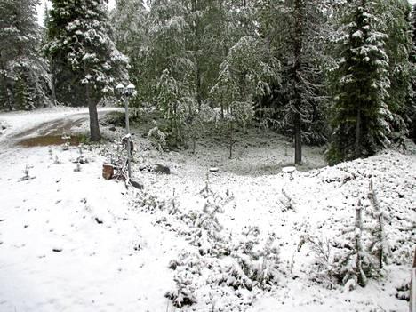 Rukalla oli tiistaiaamuna valkoinen lumipeite.