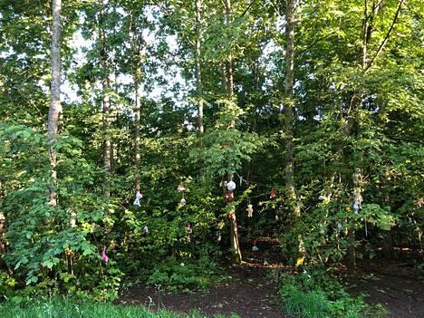 Erilaiset pehmoeläimet riippuvat ympäri pientä metsäaluetta.
