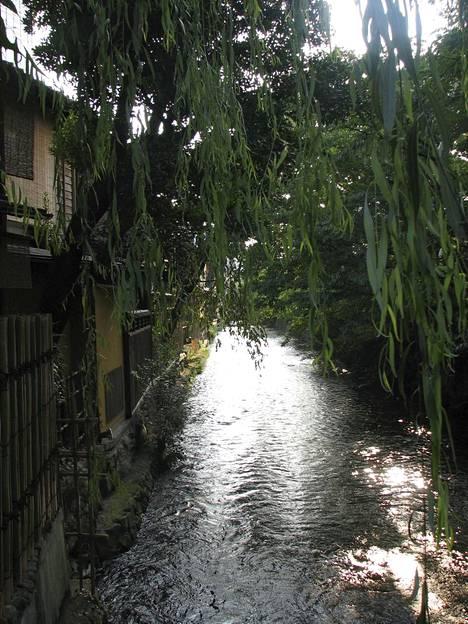 Gionia halkovan Shijo Dorin toisella puolella silmä lepää veden ja valon leikeissä.