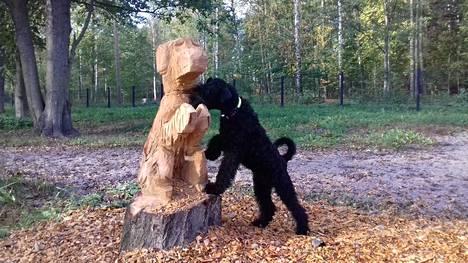 Tuntemattomaksi jäänyt koira kävi tutustumassa lepästä veistettyyn koiraan.