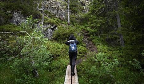 Luonnossa liikkuminen on monin eri tavoin hyväksi ihmiselle. Se parantaa myös tasapainoa.