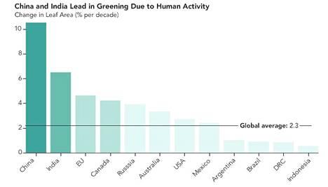 Kiinan ja Intian lisäksi metsien ala on lisääntynyt keskimääräistä enemmän esimerkiksi EU:n alueella.
