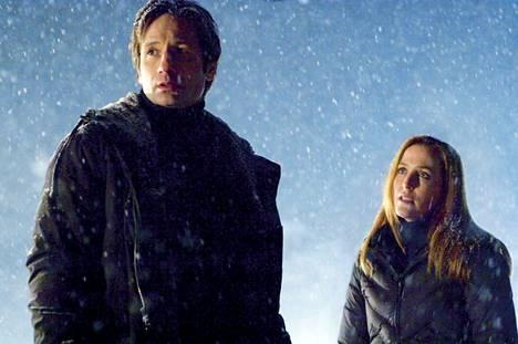 Suositussa X-Files sarjassa etsitään totuutta salaliittojen takaa. Hallituksen salaamia avaruusolioita ei ole vielä löytynyt, mutta Leicesterin sarjajohto sen sijaan on totisinta totta.