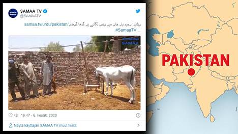 """Aasin """"pidätys"""" levisi kansainväliseksi uutiseksi, kun paikallinen toimittaja oli jakanut Twitterissä tapaukseen liittyvän uutisvideon."""