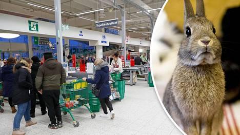 Joensuun Prismaan suunnitellaan lemmikkien myyntiä.