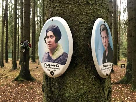Kahden nuoren naisen valokuvat keskellä metsää pysäyttävät. Annasta ja Nadezhdasta on kerrottu kuvatauluissa vain nimet ja elinvuodet.
