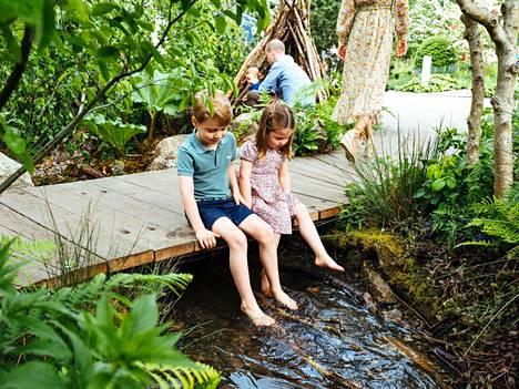 George, 5, ja Charlotte, 4, tutkailivat puron syvyyksiin heilutelle jalkoja veden yläpuolella.