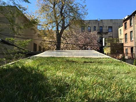 Majan katolla kasvaa nurmi.