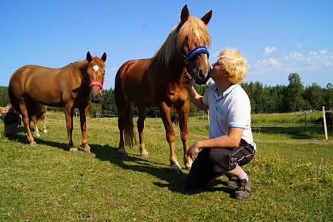 Vennelmon Varma on rakas hevonen Tapio Kukkoselle.
