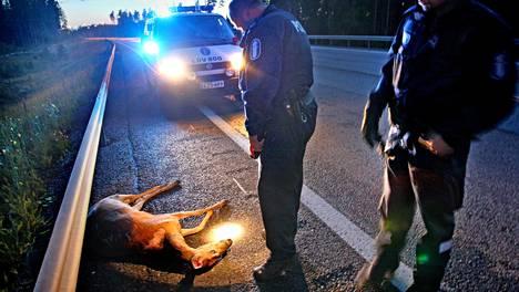 Valkohäntäpeurakolareita tilastoitiin viime vuonna 6 507 ja metsäkauriskolareita 4 792. Poliisi selvitteli peurakolaria Porvoon ja Loviisan välillä 2007.