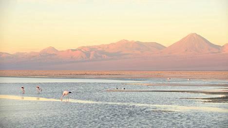 Upeat kuvat: Atacaman autiomaa on täynnä ihmeellisiä maisemia – äärettömästä kuivuudestakin löytyy järviä
