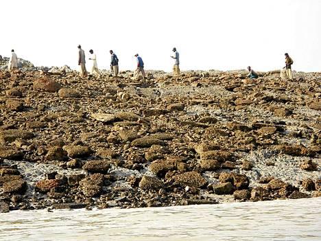 Kivinen saari nousi noin 600 metrin päähän rannasta.