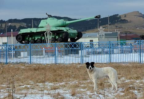 Neuvostoliittolainen panssarivaunu on museoituna muistomerkiksi Shikotanin saarella. Kuva on vuodelta 2016.