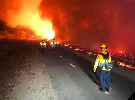 Palokunta sammuttaa maastopaloa.