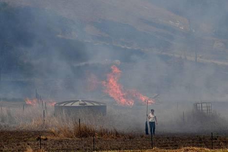 Asukas yrittää sammuttaa palamaan syttynyttä ruohoa Tareessa, Australian Uudessa Etelä-Walesissa.