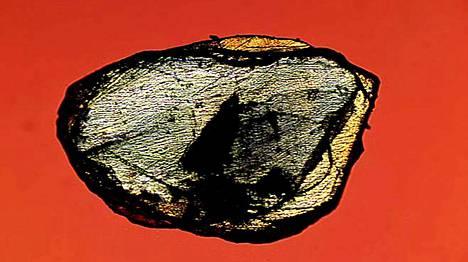 Tällainen on törmäystimantti. Geologian tutkimuskeskuksen kuva Popigain kraatterista löydetystä timantista.