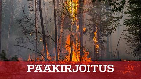 Venäjän metsäpalot riehuvat nykyisin usein pohjoisilla alueilla, joissa kesät ovat käyneet kuivemmiksi ja kuumemmiksi.