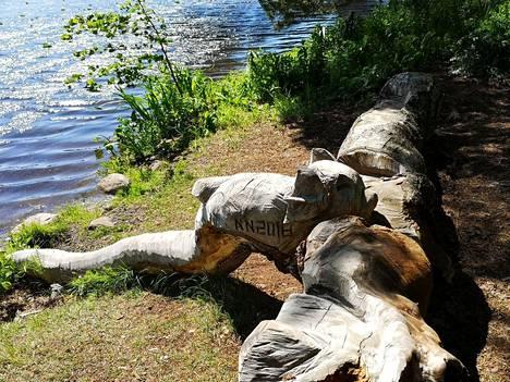 Nordström hyödyntää töissään myös kaatuneita puita.