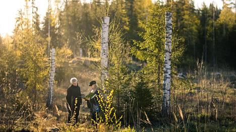 Talousmetsien luonnonhoito turvaa metsäluonnon monimuotoisuutta. Se on osa metsänhoitosuunnitelmaa.