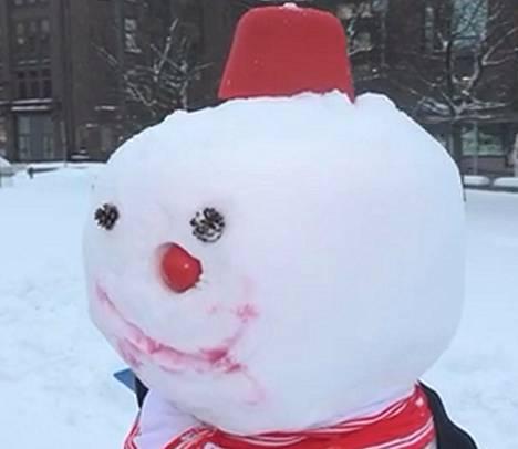 Kuva 1. Minkä puolueen lumiukko?