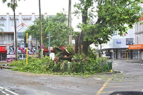 Kaatuneet puut aiheuttivat runsaasti ongelmia.