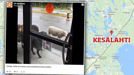 Kesälahden kunta yhdistyi Kiteen kunnan kanssa Kiteen kaupungiksi vuonna 2013.