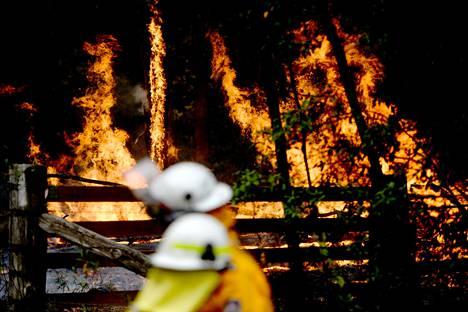Uuden Etelä-Walesin ja Queenslandin osavaltioiden paloissa on kuollut ainakin kolme ihmistä ja tuhoutunut jopa miljoona hehtaaria maastoa.