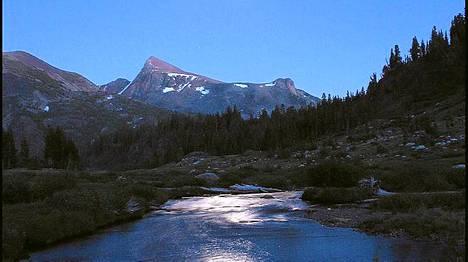 Yosemiten kansallispuistossa sijaitsevasta myrkkyjärvestä on löydetty aiemmin tuntematon elämän muoto.