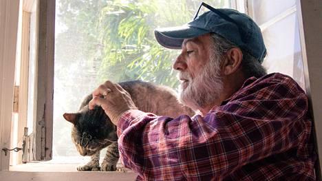 Dave Gonzales asuu 54 kuusivarpaisen kissan kanssa – polveutuvat Ernest Hemingwayn lemmikeistä