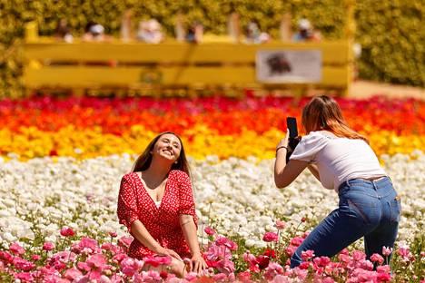 Vierailijat ottivat toisistaan kuvia keskellä kukkaloistoa.