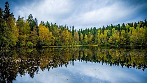 Uusiseelantilainen toimittaja vieraili Suomessa. Sarah Marshall kirjoitti matkasta artikkelin, jossa saunominen ja luonto saivat paljon tilaa.