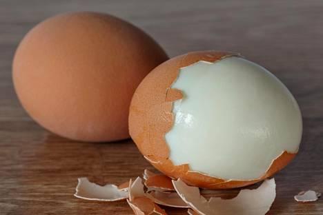 Tuunaa piirakka proteiinipitoisella keitetyllä kananmunalla.