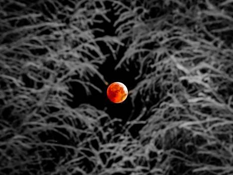 Talvinen kuunpimennyskuva Oulusta.