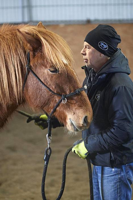 Kari Vepsä kouluttaa hevosia.