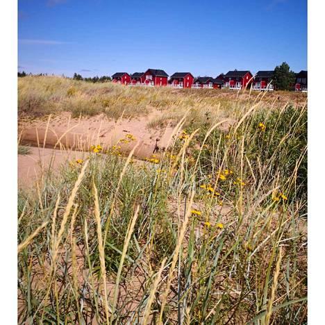 Marjaniemen hiekkaranta Hailuodossa on satumaisen kaunis.