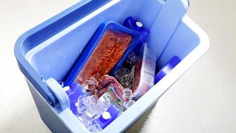 Mitä täydempi kylmälaukku, sen paremmin ruoat pysyvät kylmänä.