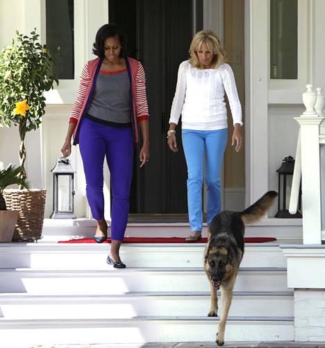 Kuvassa Jill Biden astelee Champ-koiransa kanssa.