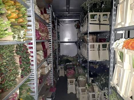 Huumausaineet oli pakattu kuorma-autoon kukkien ja kasvien kuljetusruukkuihin. Rahtia kuljettanutta yritystä ei epäillä osallisuudesta mihinkään rikokseen.