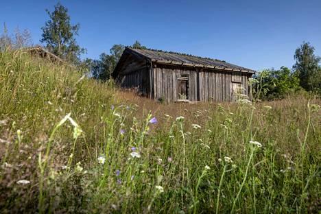 Kalevalan koonnut Elias Lönnrot syntyi ja kuoli Sammatissa. Hänen synnyinkotinsa Paikkarin torppa on nykyisin museo.