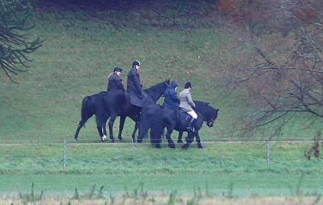 Prinssi Andrew (keskellä vasemmalla) ja kuningatar Elisabet (keskellä oikealla) ratsastivat yhdessä perjantaiaamuna.