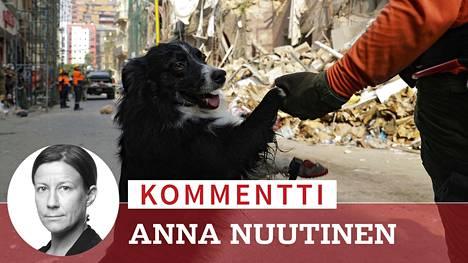 Chileläisen pelastusryhmän Flash-koirasta on ehdotettu jo Libanonin seuraavaa presidenttiä.