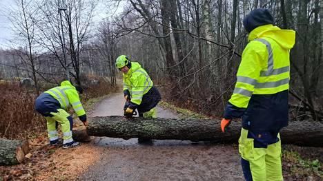Itä-Helsingissä raivattiin torstaina kävelytien yli kaatunutta puuta.