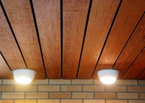 Harvinaista punamäntyä Ryysyrannan katossa on yritetty ostaa puusepäntarkoituksiin.