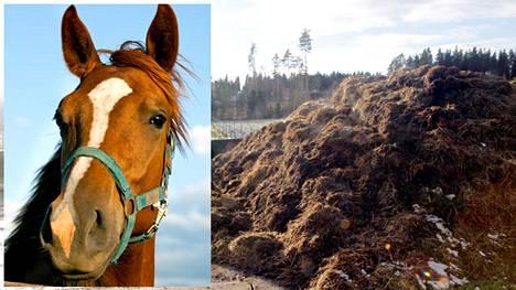 Tuleva hallitus sallii hevosen lannan polttamisen.