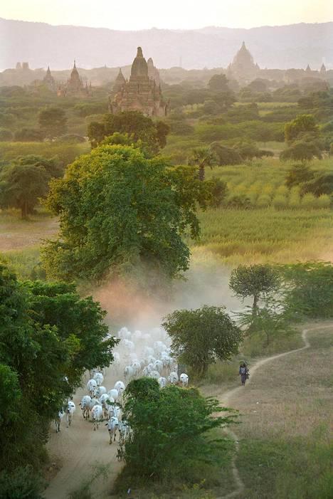Baganin muinaisen kuningaskunnan kulta-aikaa olivat 1000–1200 -luvut. Laaksossa on yhä jäljellä yli kahdentuhannen buddhalaistemppelin jäänteet. Alue on Unescon maailmanperintökohde.