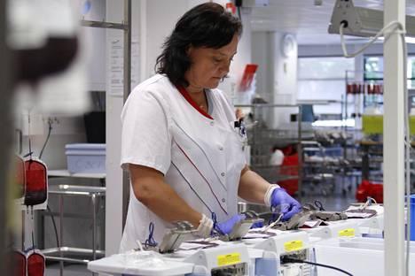 Verihiutaleet ovat Veripalvelun työläin valmiste. Erottelun jälkeen neljän veripussin letkut ja tiedot on yhdistettävä.