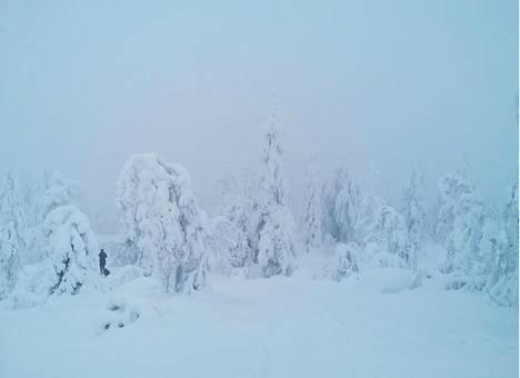 Särkijärven huipulle matkaa talvisin noin tunnin.