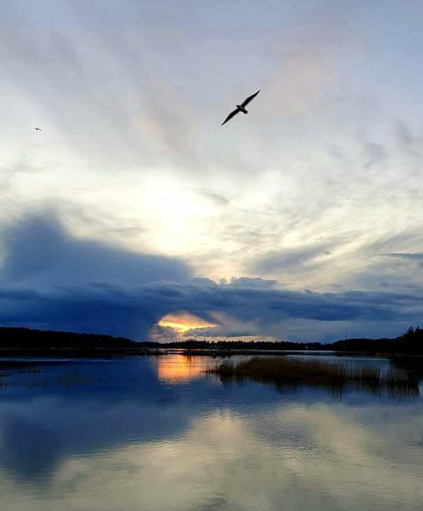 Kaunis järvimaisema Haminasta.