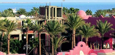 Reppukonkari hämmentyy helpotsi viiden tähden hotellialueella Egyptissä.